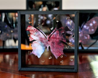 Cosmic Entomology - floating butterfly Box