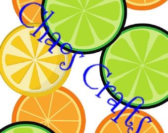 Citrus fruit digital prints A4, A3