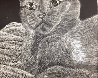Custom Scratch Board, 8 1/2 x 11inches, Animals or People