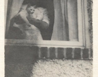 "Vintage Snapshot ""Kitty In The Window"" Faceless Woman Holds White Cat Found Vernacular Photo"