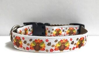 5/8 Turkeys & Leaves Collar