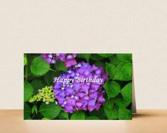 Happy birthday: hydrangea card. Printable digital photo card download. Birthday card. Flower. Bloom. Garden flower. Purple.