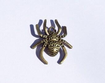 Bronze Spider Charm