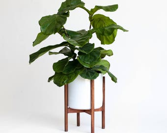 Large Mid-Century Modern Planter, Plant Stand with 10 in Ceramic Pot