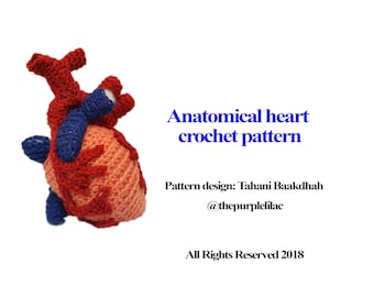 Anatomical Crocheted Heart