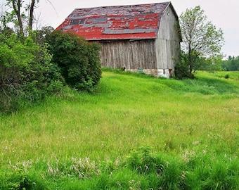 Barn Hidden-8x10 Photo