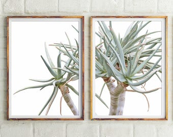 Succulent Print, Succulent Wall Decor, Cactus Print, Botanical Prints, Set  Of 2