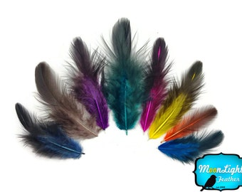 Rooster Feathers, 1 Pack - COLORFUL Mix Hen Saddle Half Bronze Feathers 0.10 oz. : 3606