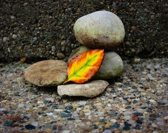 Handsculpted Clay Autumn Leaf Magnet