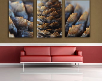 Pine Cone Photograph, Three print Set, Nature Fine Art Wall Art, Macro Photography, Brown Pine Cones Photo Prints, 3 Print Grouping