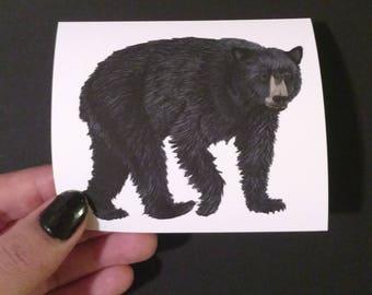 Black Bear Sticker | Vinyl Sticker