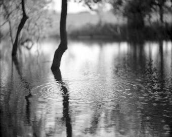 Landscape, Black and White, Photography Print, Photograph, Wall Art