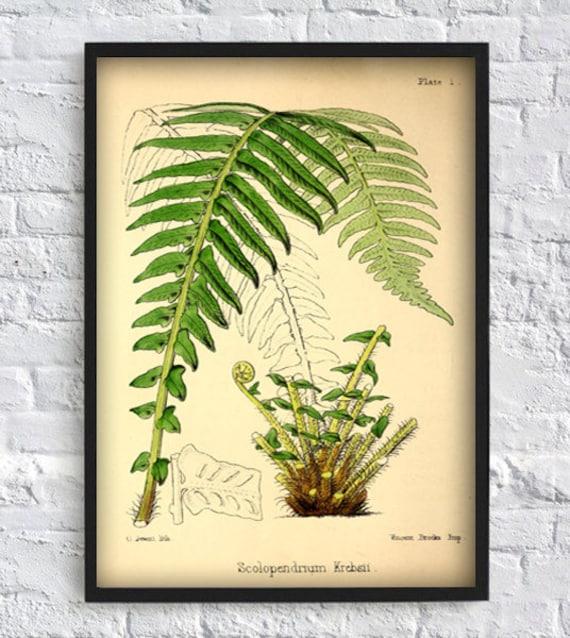 Fern print fern wall art fern leaf green leaves printable