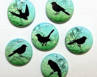 Green Vintage Birds Set of 6 Buttons Pinbacks Badges 1 inch