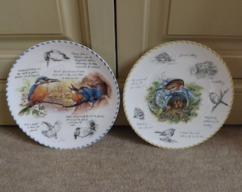 WEDGWOOD BIRD PLATES, Collectors Plates.  Pair of Bone China Plates. Robin Plate, Kingfisher Plate, Bird Lovers Gift, Christmas Gift