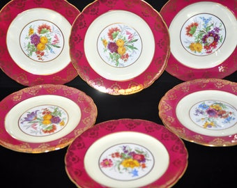 Decorative Plates, Set of 6, Floral, Paragon, Vintage luncheon plate, salad, Fabulous Gift Idea, Less than 20.00 each, deep rose color #1932