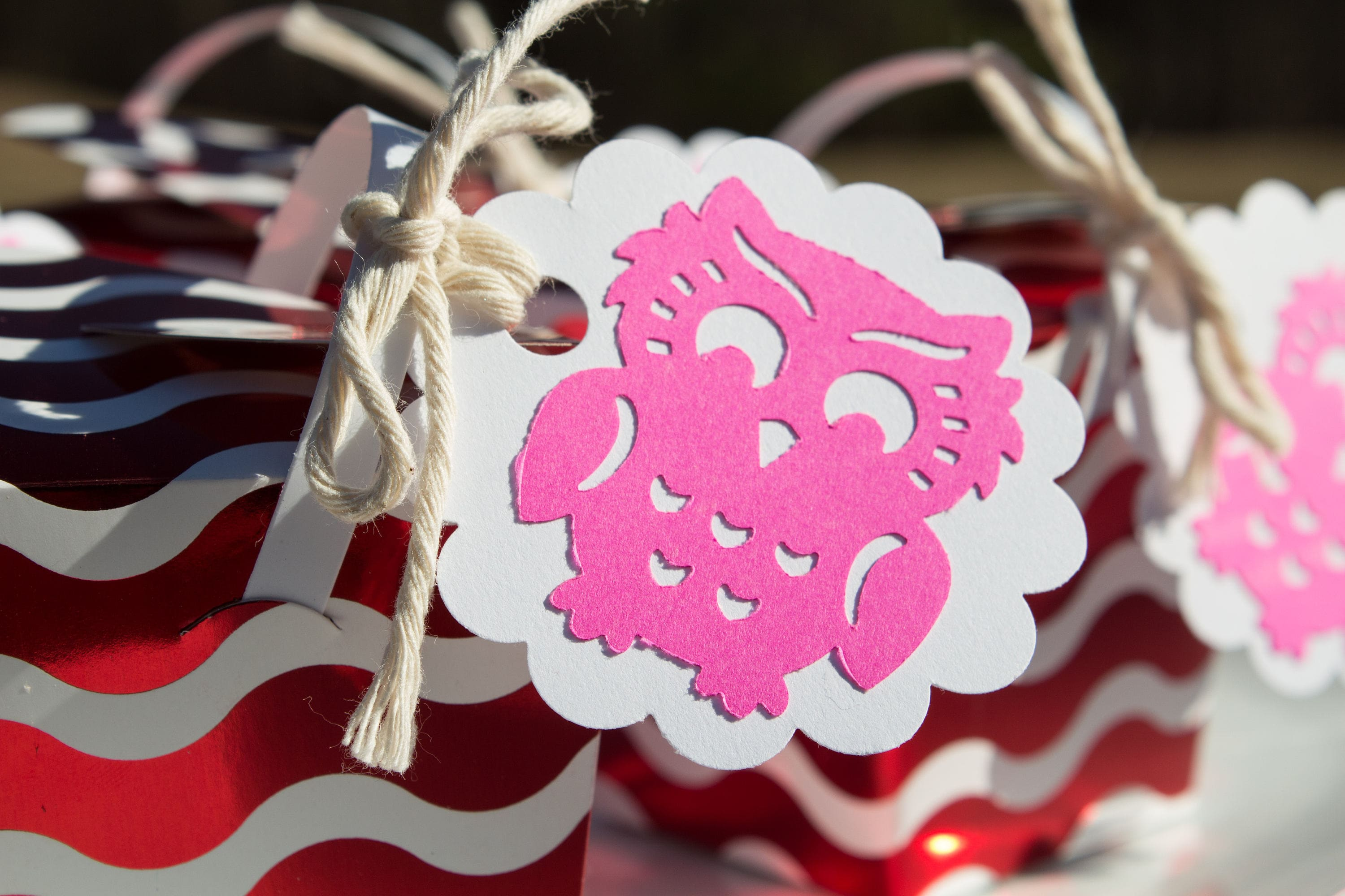 Owl Themed Pink Owl Gift tags Goodie bag tags Pink & white