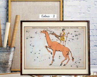 The Constellation, Astronomy,  Zodiac, Hand-Coloured Celestial Star Chart, The constellations Camelopardalis, Tarandus and Custos Messium
