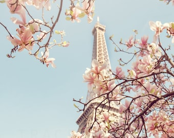 Paris Photograph | Pink Magnolias | Springtime in Paris | Wall Art | Eiffel Tower | April in Paris | Paris in Bloom | Blush Pink | Pale Blue