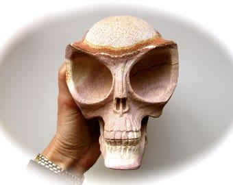 Beige Sandstone Alien Starbeing Crystal Skull Time Traveller 130mm 1694g