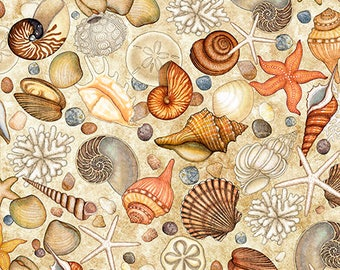 Ocean Oasis, Seashell Fabric, Shells - Dan Morris for Quilting Treasures - 25833 Cream - Priced by the Half Yard