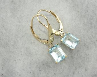 Emerald Cut, Blue Topaz Drop Earrings, Simple Elegance  FQ8CEJ-R