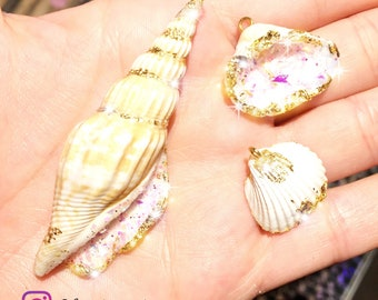 Decorated shells.