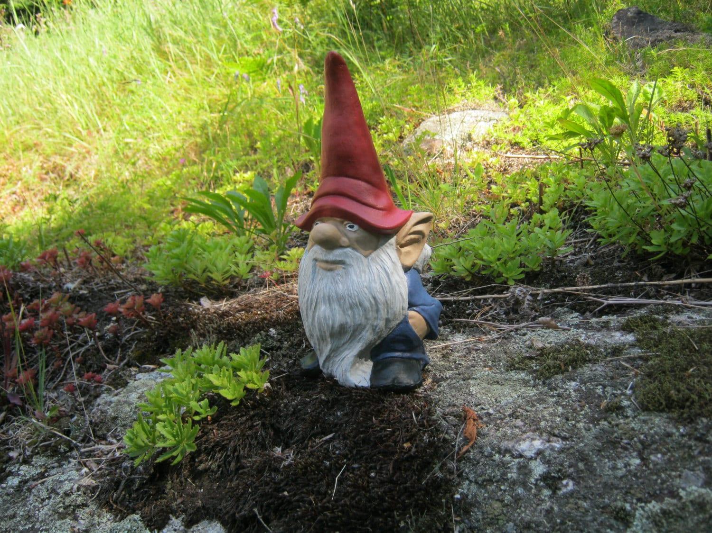 Gnome Garden: Gnome Statue Garden Gnome Cement Statue Painted Concrete