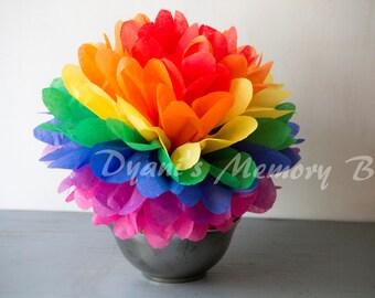Rainbow Handmade Tissue Paper Pom Poms / paper flower /Wedding Poms / Nursery / Birthday party/ Christmas Party
