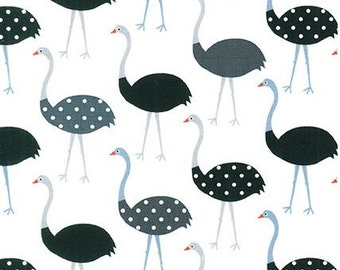 Charcoal Ostriches from Robert Kaufman's Urban Zoologie Collection by Ann Kelle