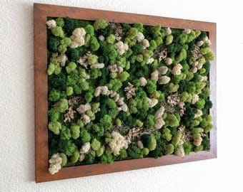 Carefree Large Framed Moss Vertical Wall Garden with Reindeer Moss, Spanish Moss and Lichen - 20x26 or 18x22 inches