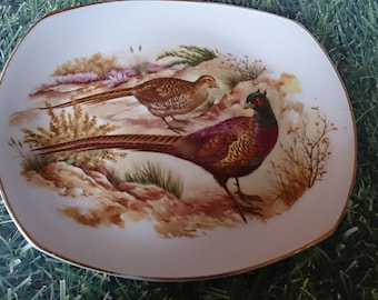 Large decorative plate with pheasants amongst plants.Squared off oval shape. Gold rim.