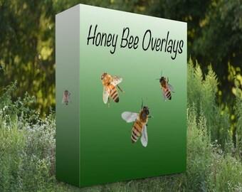 Honey Bee Overlays