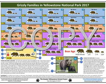 Grizzly Families in Yellowstone National Park 2017 Chart