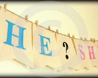 Gender Reveal banner-He or She-Party Banner-baby shower-boy or girl-Little Man Party-Baby Shower banner-Boy or Girl-Mustache Party-Baby