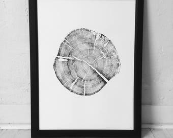 Grand Tetons Print, Tree ring art, Woodcut, Pine Tree art Print, Wyoming Art, Arborist art, Tree Ring Print, Tree hugger gifts, Arborist