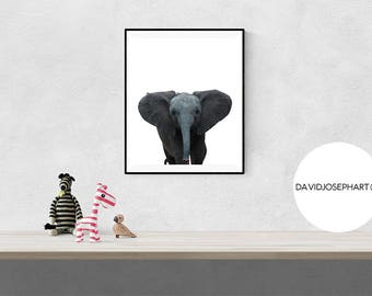Elephant Nursery Print, Baby Elephant Print, Baby Animal Print, Nursery Wall Art, Elephant Photography, Baby Elephant Poster, Elephant Print