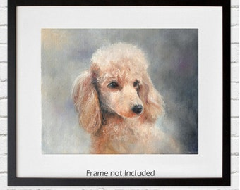 Print of Apricot Poodle Original Art - 8 by 10