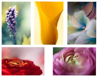 A set of 5 colorful postcards, of flowers, tulips, abstractions and decorative cards to mail to your loved one, thank you, & thinking of you
