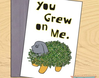 You Grew on Me, chia pet encouragement flirty romantic funny blank card