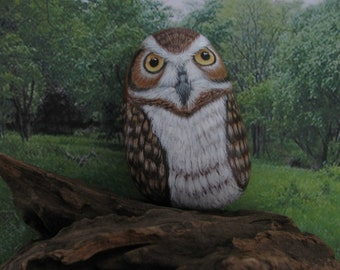 Owl hand painted on river rock