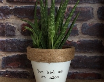 Plant pot gift 'You had me at aloe' indoor novelty planter - for plants/ succulent/ aloe vera/ valentines