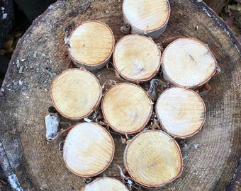 White birch wood slices