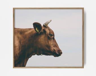 cow print, country print, country decor, farm print, farm art, farm decor, western print, western art, southwest print, western decor, cow