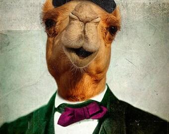 Camel Print Art Desert Animal Home Decor Animals wearing Clothes Wall Art Safari Nursery Funny Suit Gentleman Animal Photography - Humphrey