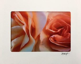 In Full Bloom Part 2...Set of Two...Blank Inside