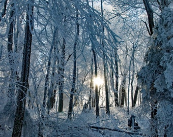 Winter in the Appalachian Mountains, Smokey Mountains