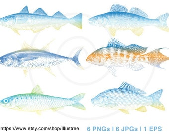 Fish digital clip art, blue sea fishes clipart set, ilustration, drawing, nautical, beach house, print, printable, EPS, instant download