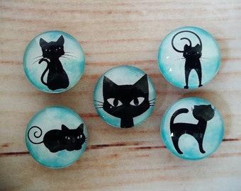 Cat Lady Fridge Magnets, Glass Kitchen Magnets, Set of 5, Kitchen Decor, Hostess Gift, Housewarming Gift, Office Decor, Locker Magnet