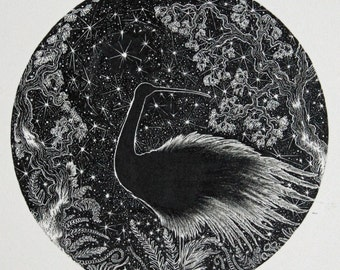 Bird Circle Illustration and bird illustration and bird black and white illustration, pen illustration, ink drawing bird, pen and ink